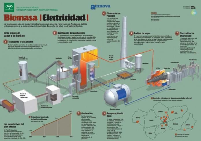 infografia energia biomasa