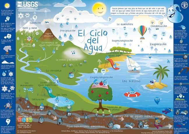 ciclo del agua 649x462 Infografía el ciclo del agua