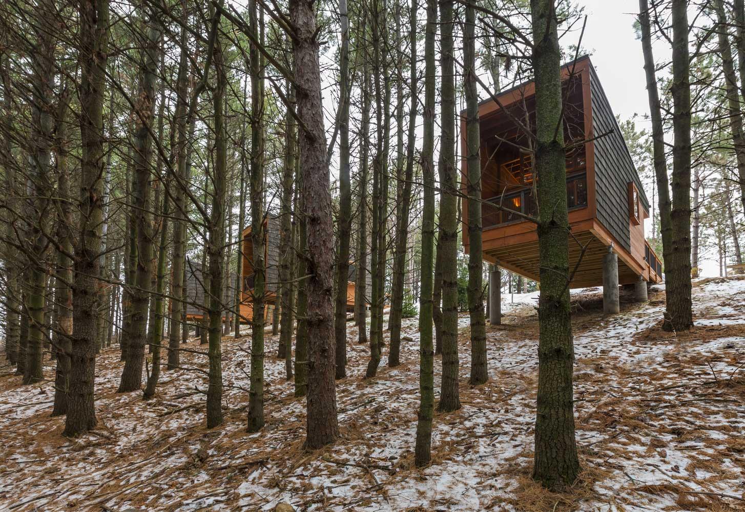 manual de construccion de casas de madera pdf