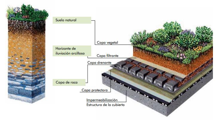 Manuales o gu as sobre cubiertas vegetales ventajas y - Cubiertas vegetales para tejados ...
