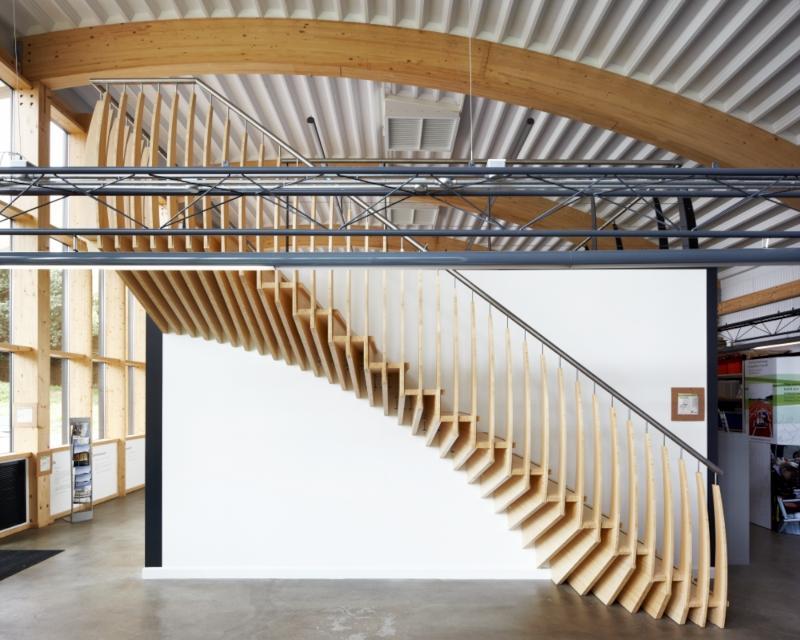 escalera organica arquitectura