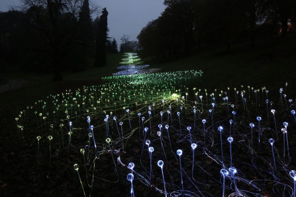 arte paisaje instalacion luces