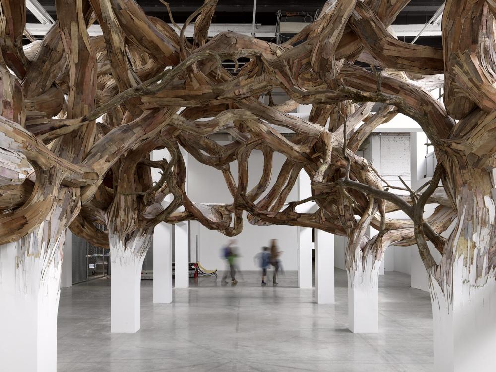 tranformacion madera - fotografia andres morin