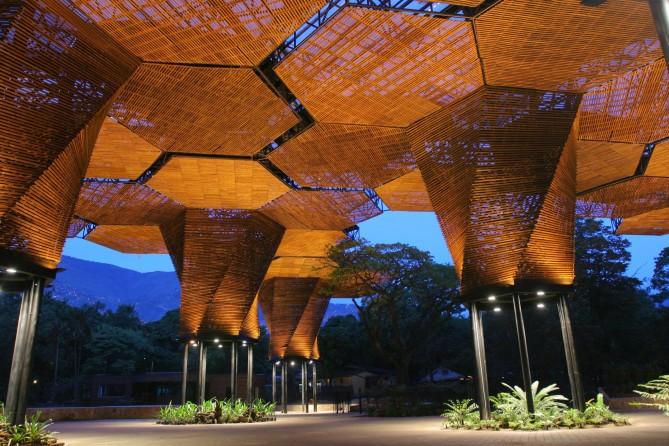 arquitectura biologica