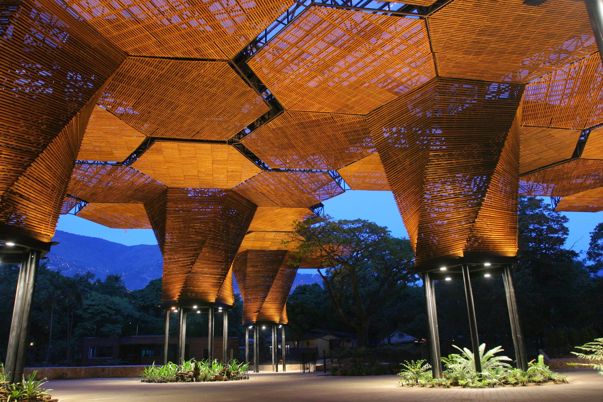 El dise o biof lico el poder de la arquitectura y la - Que es un porche en arquitectura ...