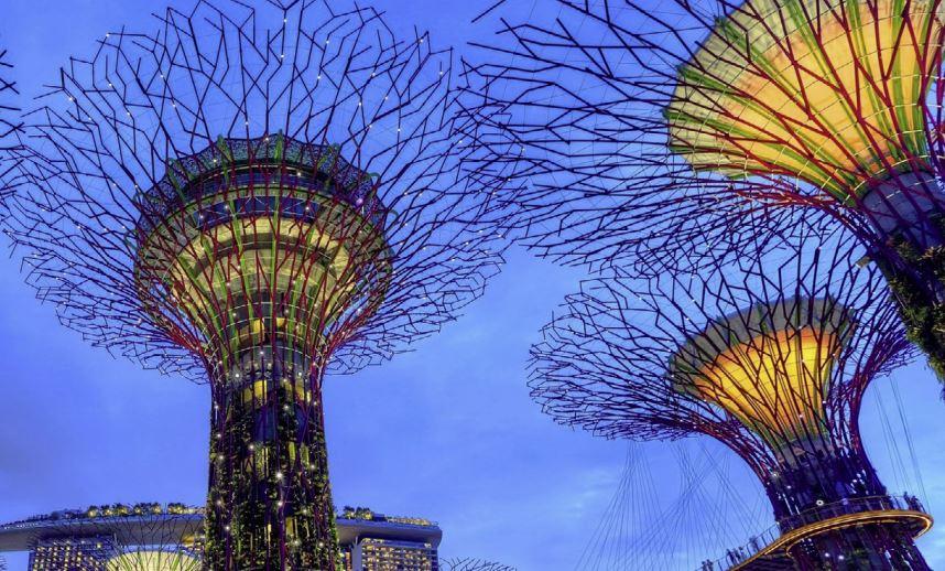 biofilico en arquitectura y naturaleza