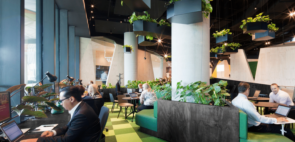 oficinas en arquitectura biofilica