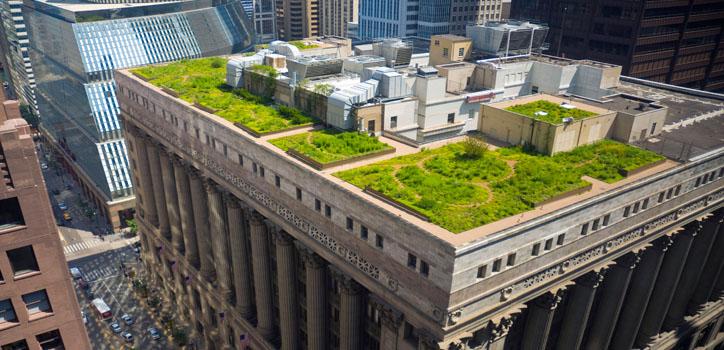 drenaje sostenible cubiertas verdes