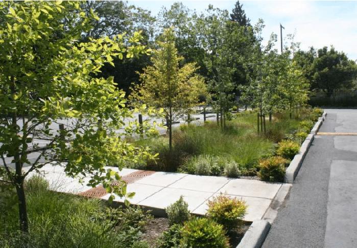 planificacion jardines