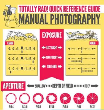 infografia manual del fotografo naturaleza
