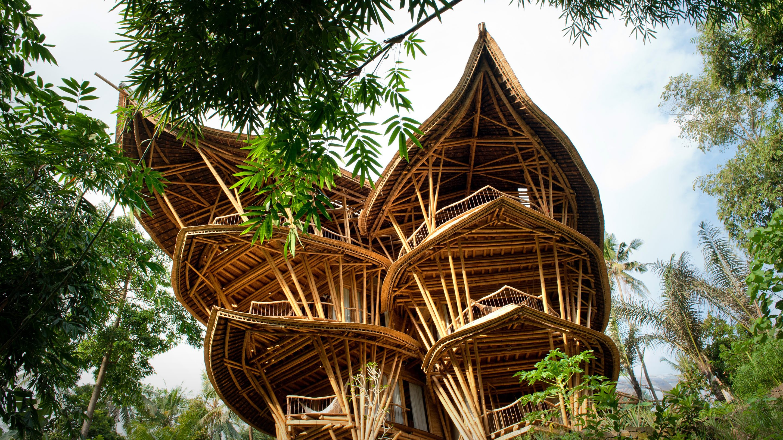 Bambú En La Arquitectura Sustentable Por Qué Su Uso