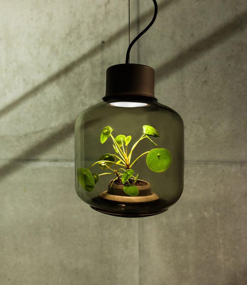 crear ecosistema autosuficiente