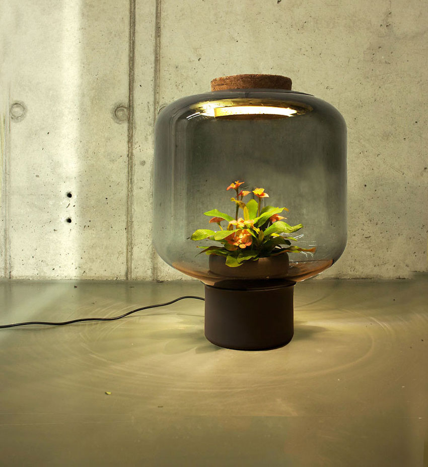 La lámpara que crea un ecosistema autosuficiente | OVACEN