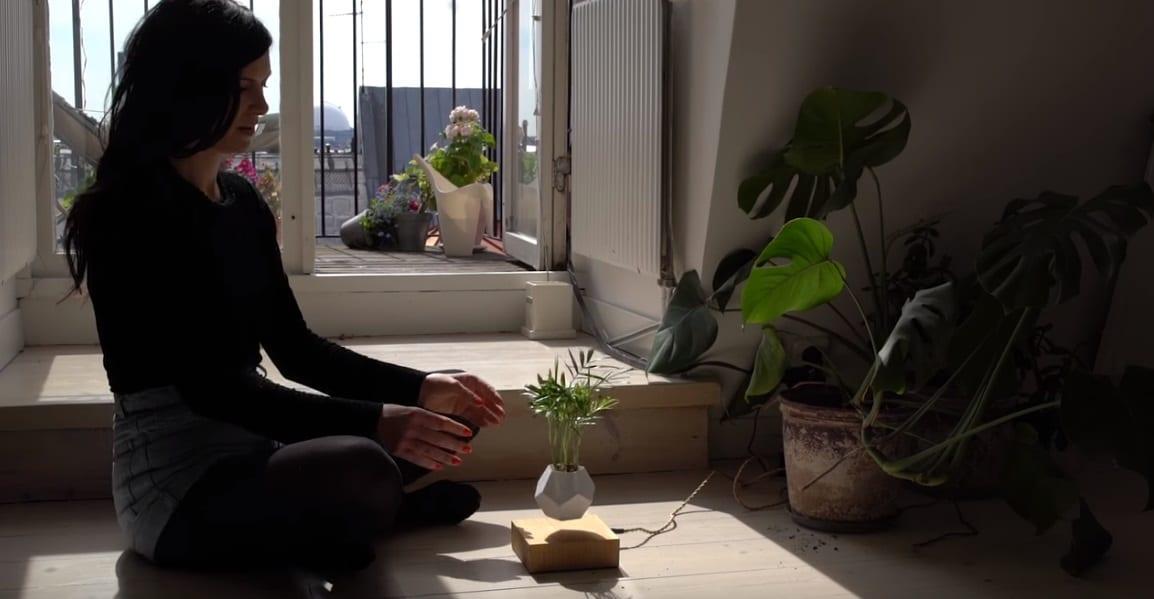 planta que levita