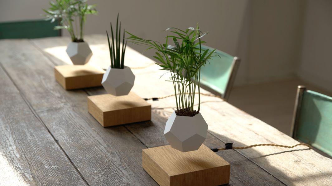 C mo dise ar una maceta flotante original ovacen for Floating plant pots
