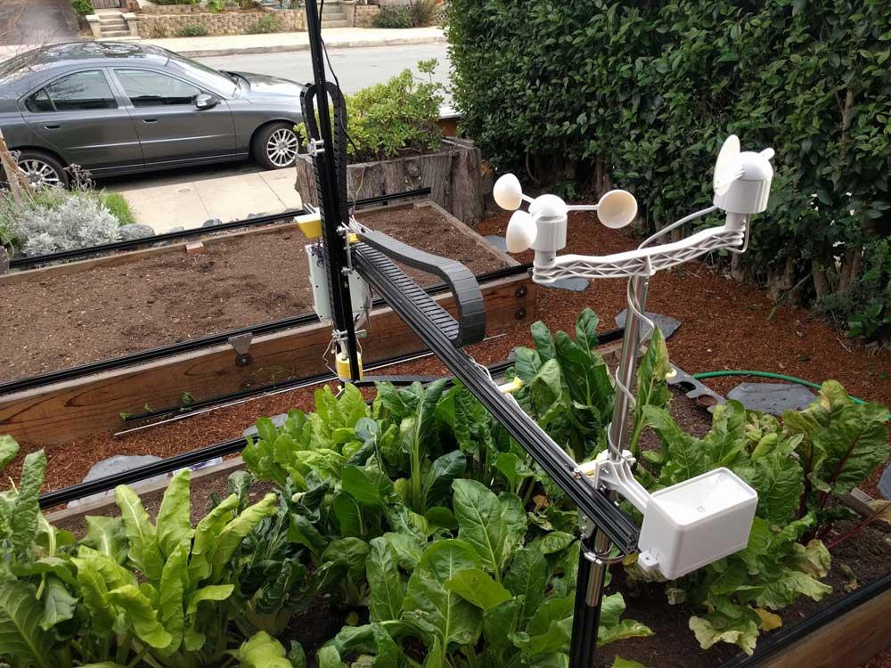 el cultivo urbano