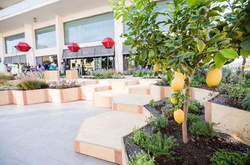 jardin de arboles
