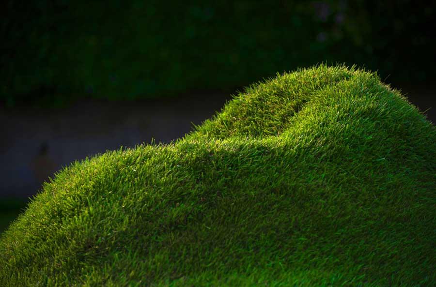 sillon ecologico