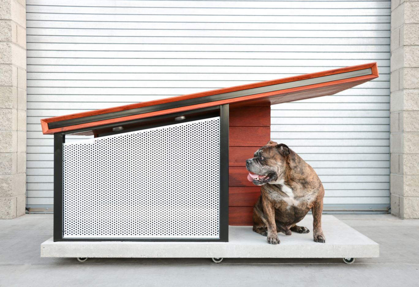 10 casas para perros con algo m s que madera y pl stico - Casas para perros con palets ...