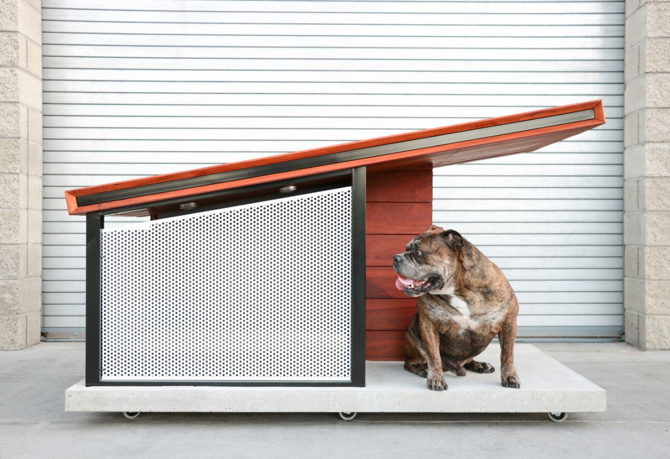 Dog House Plastic Design