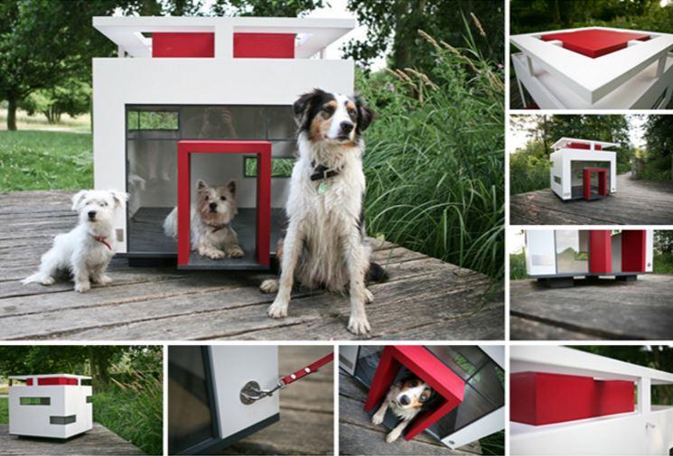 caseta para mascotas moderna