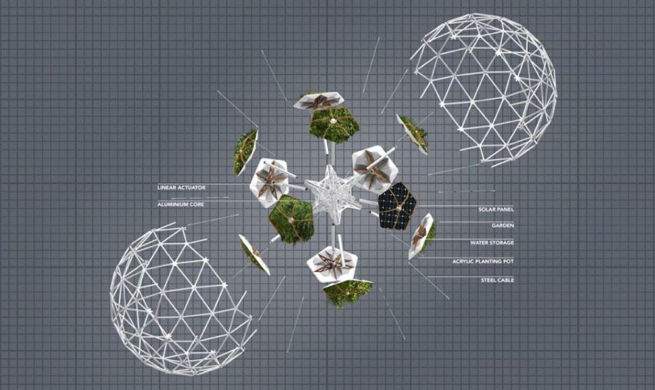 estructura con jardin