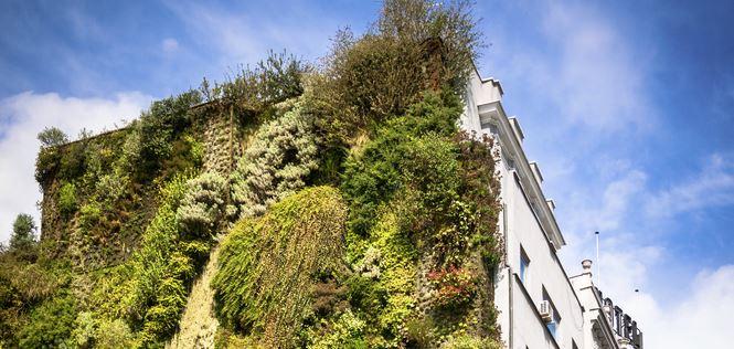 jardines para las ciudades