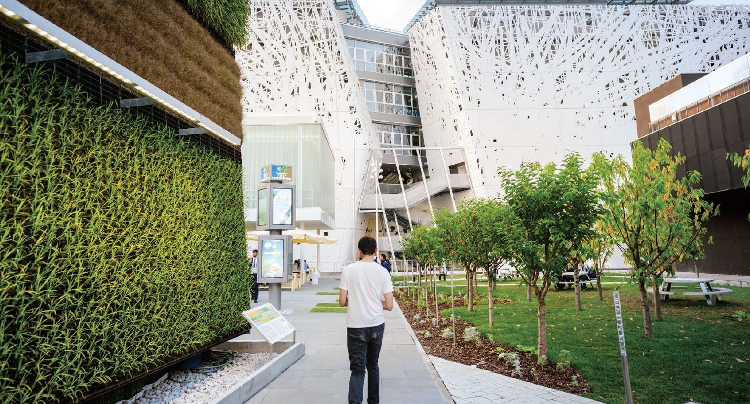 rehabilitacion urbana verde