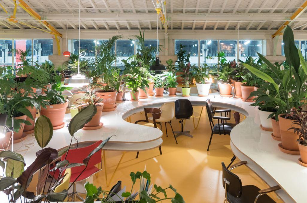 La oficina de coworking m s saludable con 1000 plantas for Oficina de prestaciones