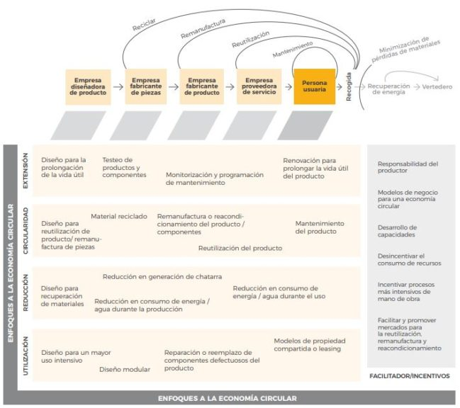 cadena de valor productos ecológicos
