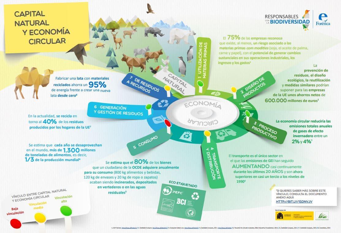 capital humano en la economía circular