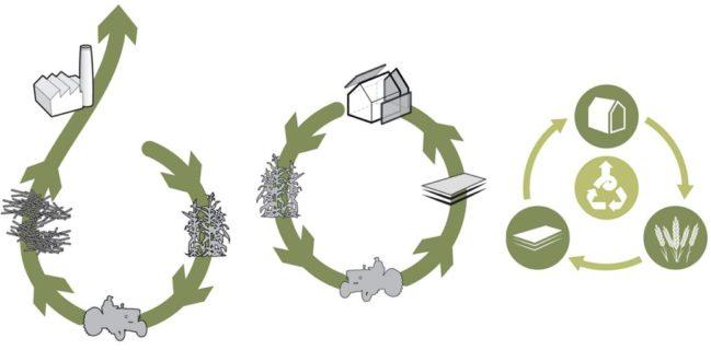desarrollo de economía circular
