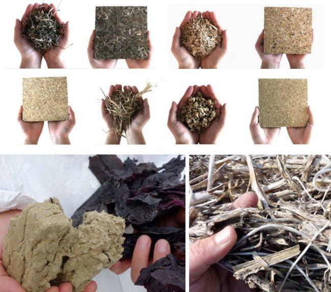 materiales biológicos