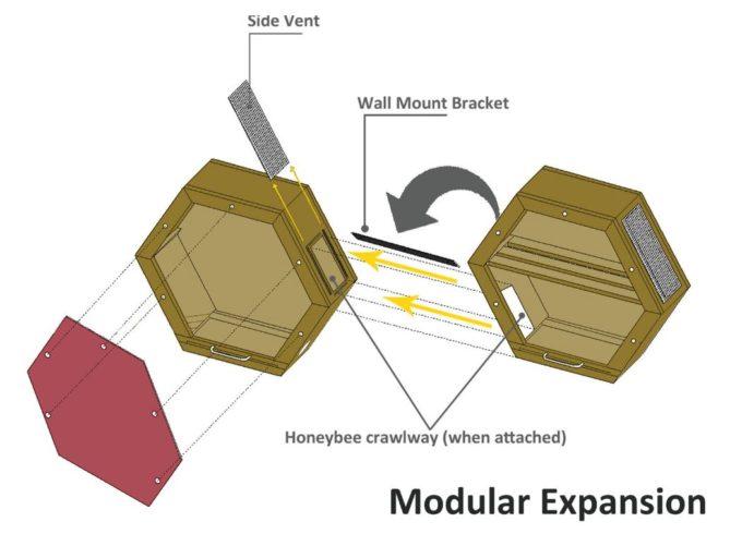 sistema modular de colmenas