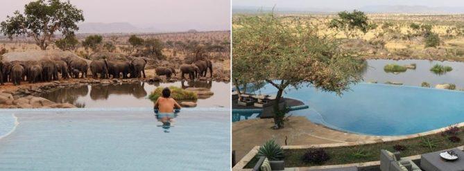 bañarse con los elefantes