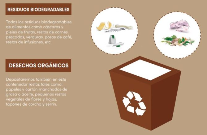 contenedor desechos orgánicos