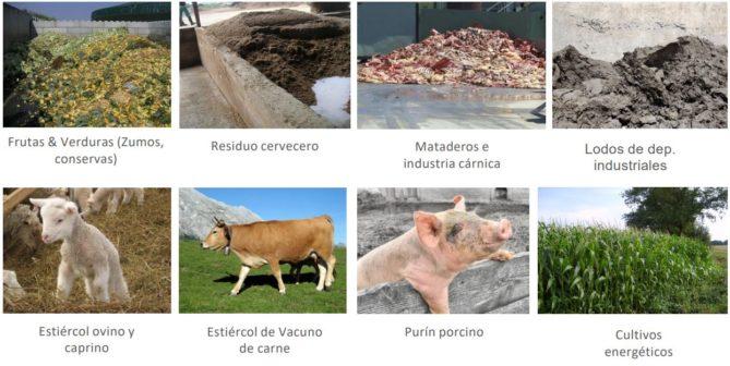 Ejemplo materias primas bioenergia