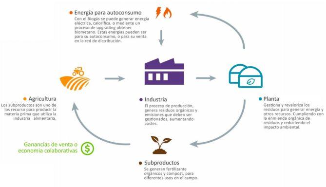 Esquema proceso obtención de la bioenergia
