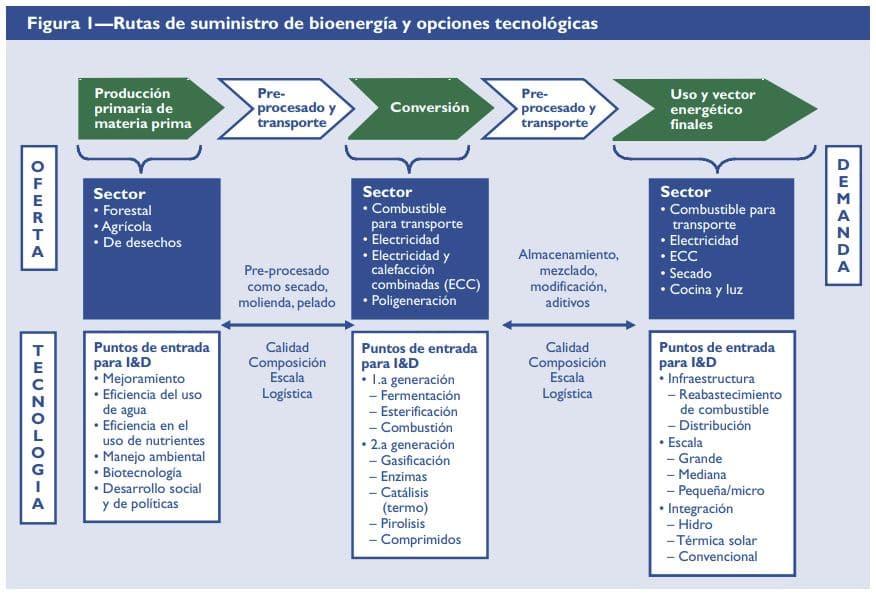 proceso producción bioenergia