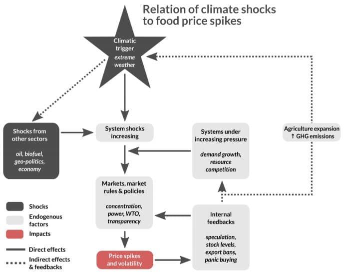 clima y aumento precios alimento