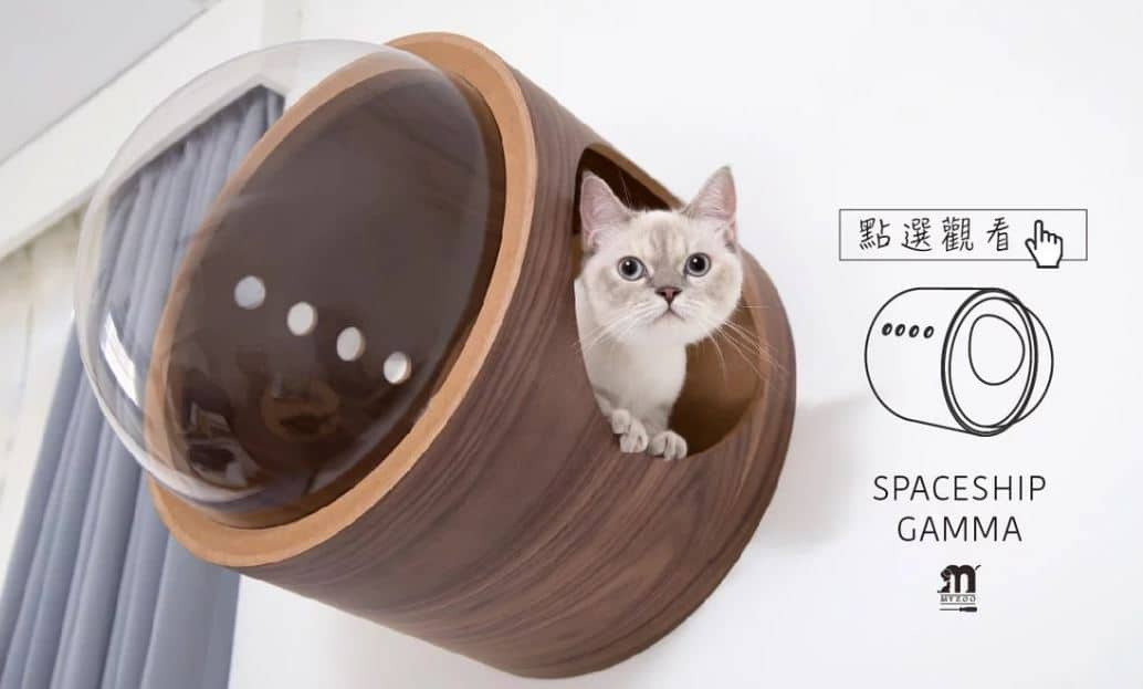 Houses and beds for cats with design - cats accessories