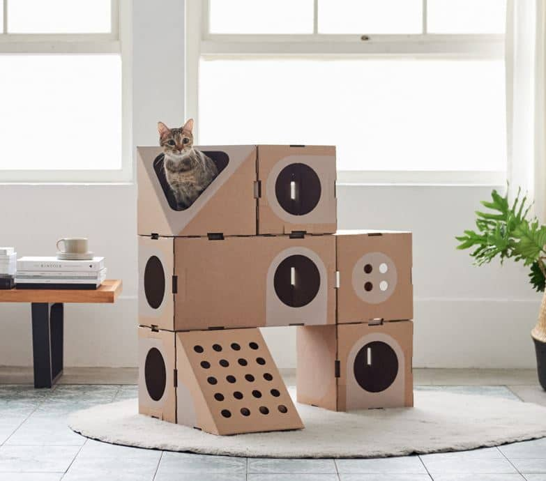 modular cat beds