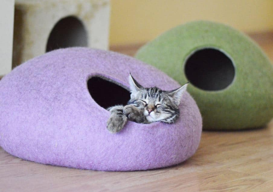 cats house with wool