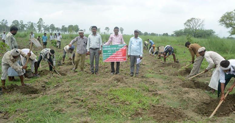 reto india plantando arboles
