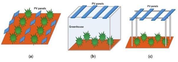 tipos sistemas agrivoltaic