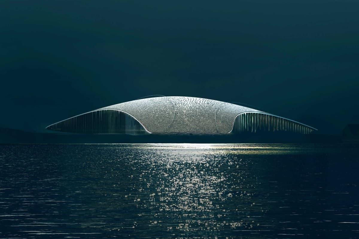 Arquitectura-ballenas