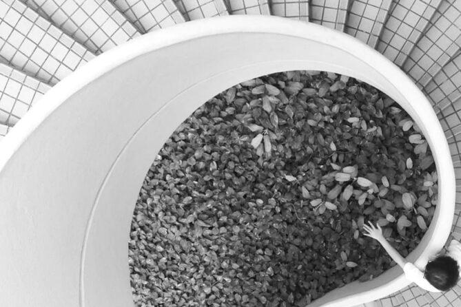 arquitectos encuentran trabajo sostenible