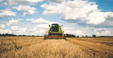 curso online agroecología