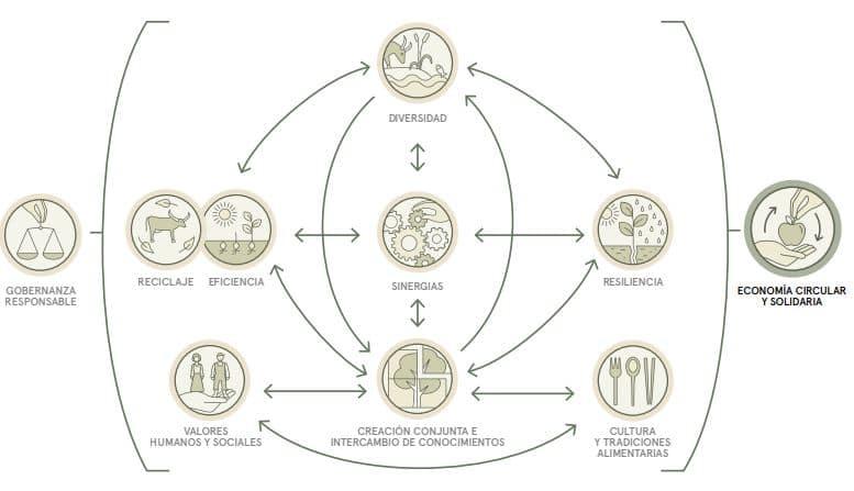 elementos de la agroecologia