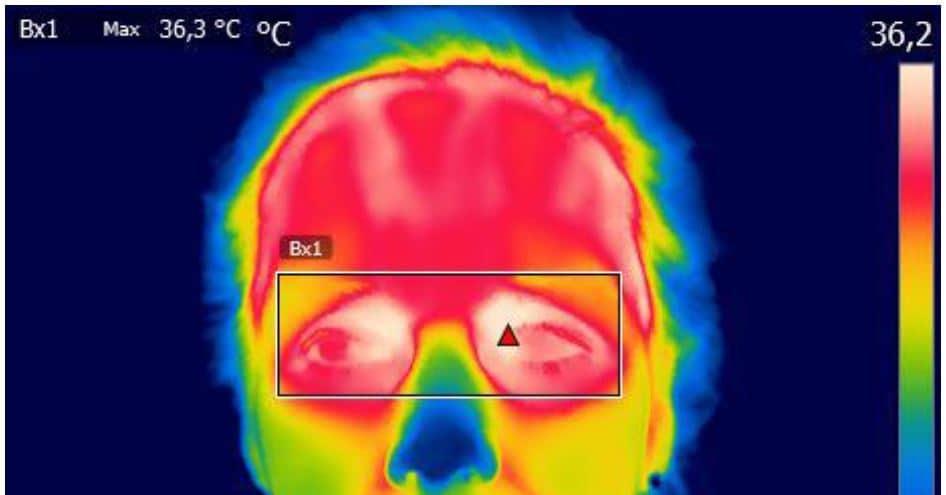 cámaras térmicas fiebre